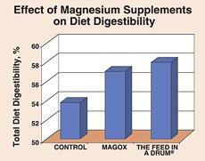 Effect of Magnesium Supplements on Diet Digestibility