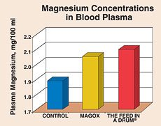 Magnesium Concentrations in Blood Plasma