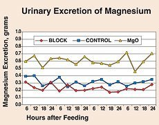Urinary Excretion of Magnesium