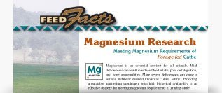 Magnesium Research for Health Benefits